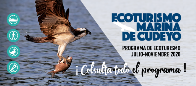 ecoturismo-banner.png